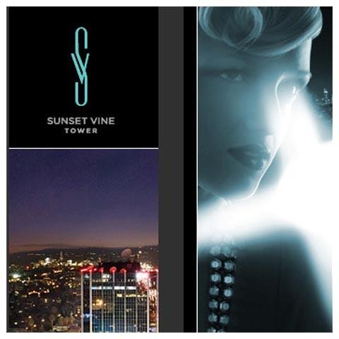 _0039_Sunset_vine_bnr_tbn